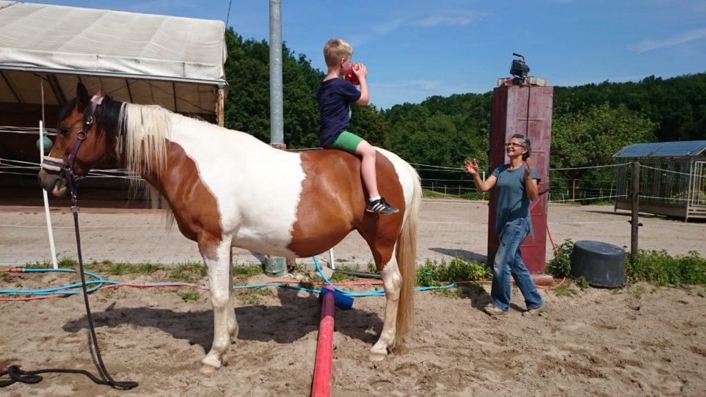 Pferd-Mensch-Energiearbeit